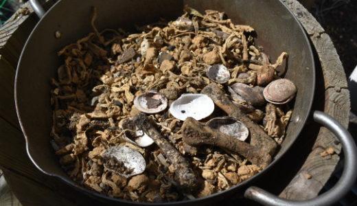 貝殻と鶏の骨