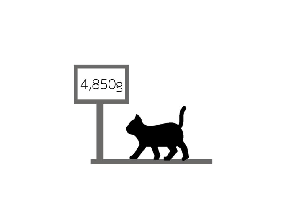 ネコの体重管理