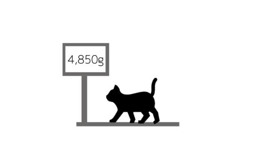 猫のベスト体重を維持する日々の体重管理を考える | ネコのいる暮らし