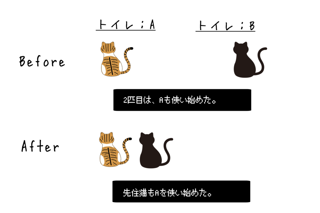 ネコのトイレ事情②