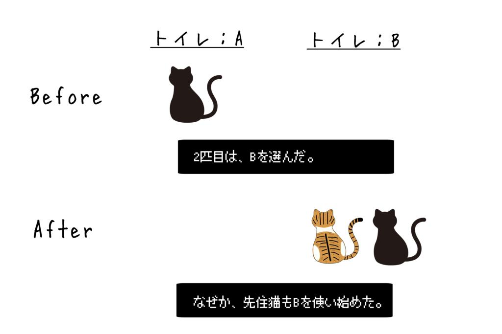 ネコのトイレ事情1