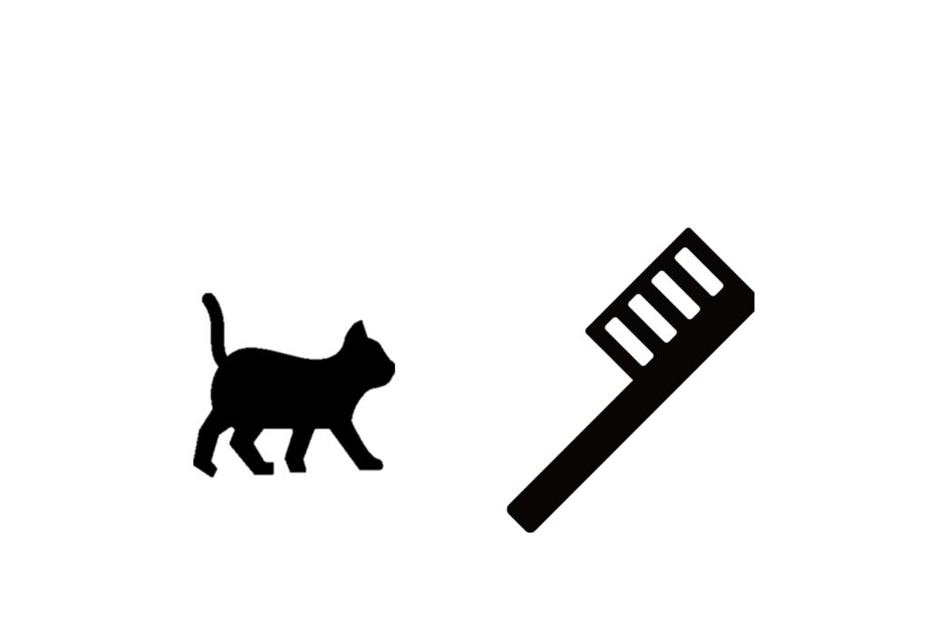 猫と歯ブラシ