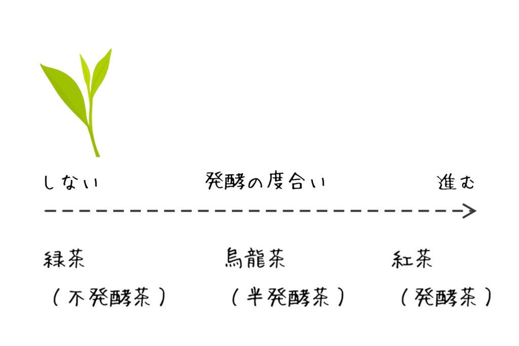お茶の発酵