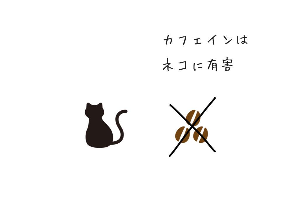 ネコにコーヒーはダメ
