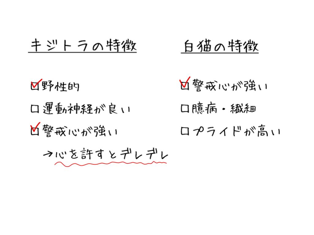 【検証】キジ白の性格