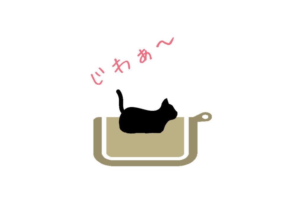 猫と電気毛布