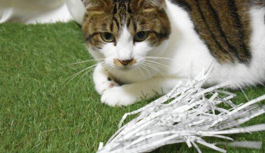 シュレッダー紙で猫のおもちゃを作る | 簡単でお金のかからないDIY